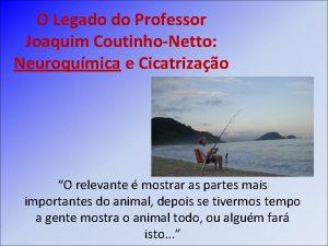 O Legado do Professor Joaquim CoutinhoNetto Neuroqumica e