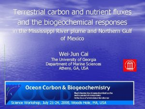 Terrestrial carbon and nutrient fluxes and the biogeochemical