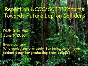 Report on UCSCSCIPP Efforts Towards Future Lepton Colliders