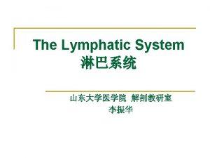 The Lymphatic System The Lymphatic System Heart Vein