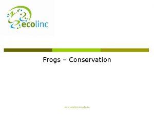 Frogs Conservation www ecolinc vic edu au Frog