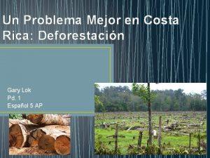 Un Problema Mejor en Costa Rica Deforestacin Gary