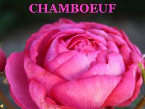 CHAMBOEUF CHAMBOEUF Une Histoire Un Projet Une Association