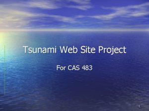 Tsunami Web Site Project For CAS 483 1