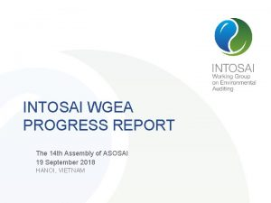 INTOSAI WGEA PROGRESS REPORT The 14 th Assembly