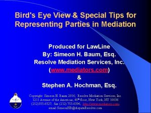 Birds Eye View Special Tips for Representing Parties