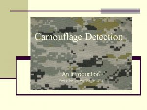 Camouflage Detection An introduction Presented by Ani Starrenburg