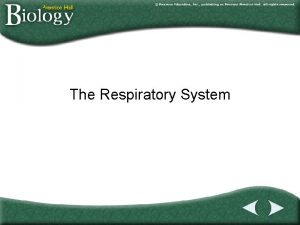 The Respiratory System Go to Section Section Outline