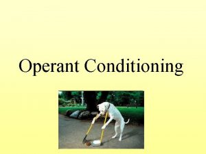 Operant Conditioning What is Operant Conditioning Classical v