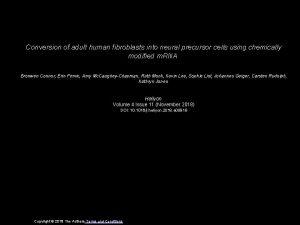 Conversion of adult human fibroblasts into neural precursor