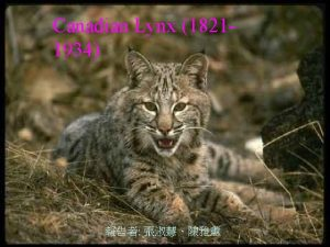 Canadian Lynx 18211934 Outline q Time plotACFPACF q