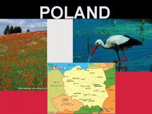 POLAND National symbols Symbole narodowe The Coat of