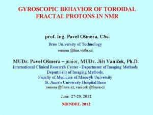 GYROSCOPIC BEHAVIOR OF TOROIDAL FRACTAL PROTONS IN NMR