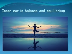 Inner ear in balance and equilibrium Equilibrium Reflexes