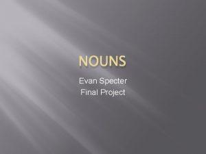 NOUNS Evan Specter Final Project A Person A