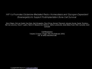 HIF1 Promotes GlutamineMediated Redox Homeostasis and GlycogenDependent Bioenergetics