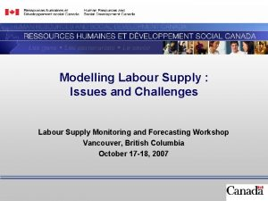 Modelling Labour Supply Issues and Challenges Labour Supply