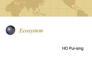 Ecosystem HO Puising What is an ecosystem An
