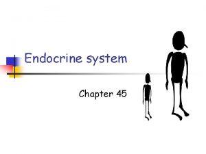 Endocrine system Chapter 45 Endocrine system n n