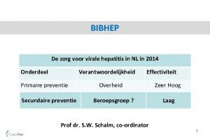 BIBHEP De zorg voor virale hepatitis in NL