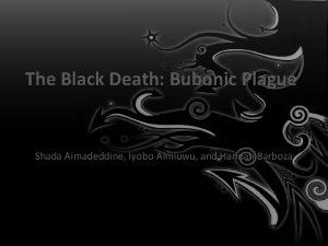 The Black Death Bubonic Plague Shada Aimadeddine Iyobo