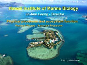 Hawaii Institute of Marine Biology JoAnn Leong Director