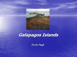Galapagos Islands Devin Pugh Galapagos Islands Where Located