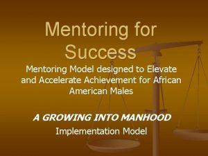 Mentoring for Success Mentoring Model designed to Elevate
