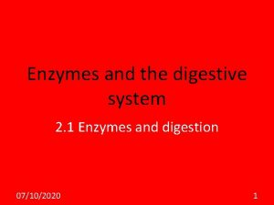 Enzymes and the digestive system 2 1 Enzymes