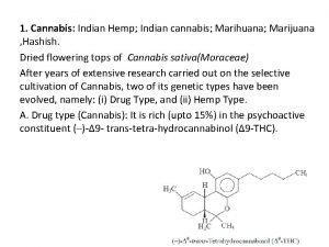 1 Cannabis Indian Hemp Indian cannabis Marihuana Marijuana