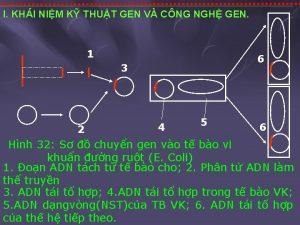I KHI NIM K THUT GEN V CNG