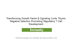 Transforming Growth Factor Signaling Curbs Thymic Negative Selection