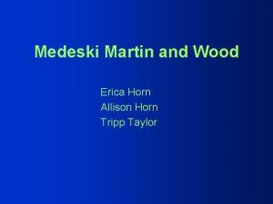 Medeski Martin and Wood Erica Horn Allison Horn