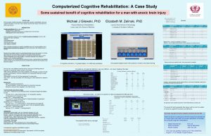 Computerized Cognitive Rehabilitation A Case Study Some sustained