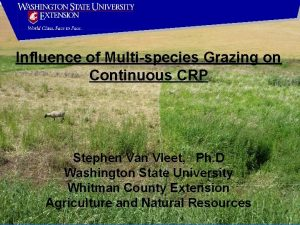 Influence of Multispecies Grazing on Continuous CRP Stephen