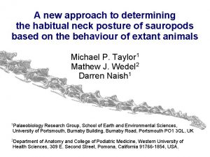 A new approach to determining the habitual neck