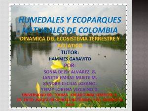 HUMEDALES Y ECOPARQUES NATURALES DE COLOMBIA DINAMICA DEL