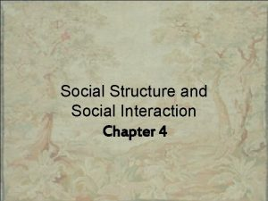 Social Structure and Social Interaction Chapter 4 Chapter