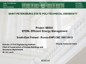 SAINTPETERSBURG STATE POLYTECHNICAL UNIVERSITY Project SE 693 EFEM