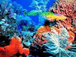 Coral Reefs By Julian Ryan Brooklyn Courtney Atolls