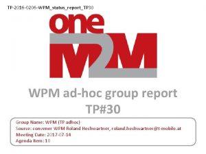 TP2016 0206 WPMstatusreportTP 30 WPM adhoc group report