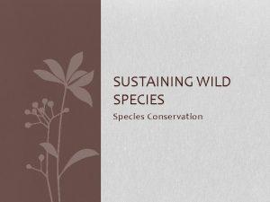 SUSTAINING WILD SPECIES Species Conservation Factors affecting Biodiversity