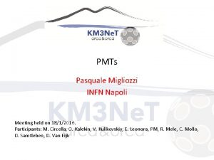 PMTs Pasquale Migliozzi INFN Napoli Meeting held on