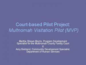 Courtbased Pilot Project Multnomah Visitation Pilot MVP Martha