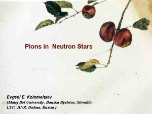 Pions in Neutron Stars Evgeni E Kolomeitsev Matej