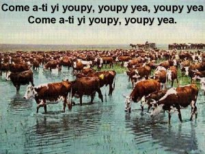 Come ati yi youpy youpy yea Cattle ranching