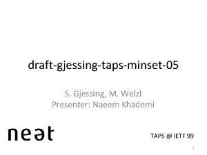 draftgjessingtapsminset 05 S Gjessing M Welzl Presenter Naeem