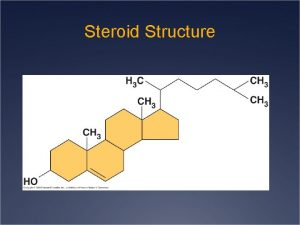 Steroid Structure Protein Structure and Function Proteins Polymers