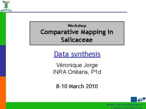 Workshop Comparative Mapping in Salicaceae Data synthesis Vronique