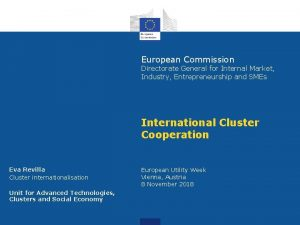 European Commission Directorate General for Internal Market Industry